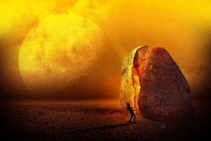 landscape-sferya-potato
