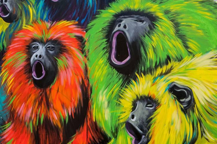 Le scimmie urbane fanno parte della tua vita?